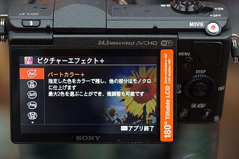 DSC00028.jpg